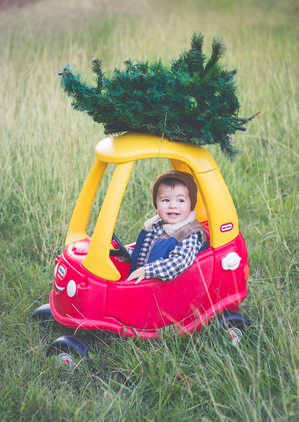Lumberjack Christmas 2014 | Laraina Hase Photography | Little Boy Christmas Pictures | Christmas Tree on Car