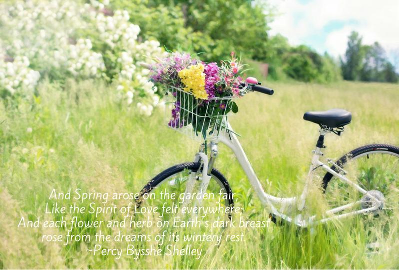 Spring inspiration.png