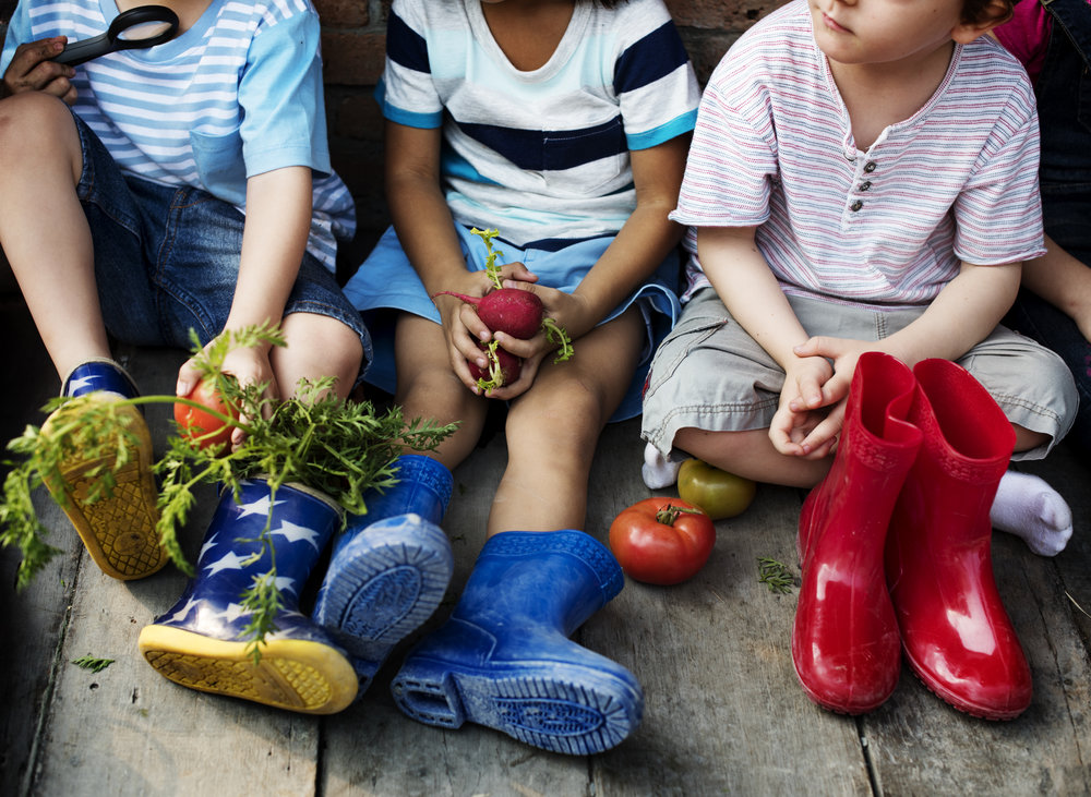Niños aman verduras.jpg