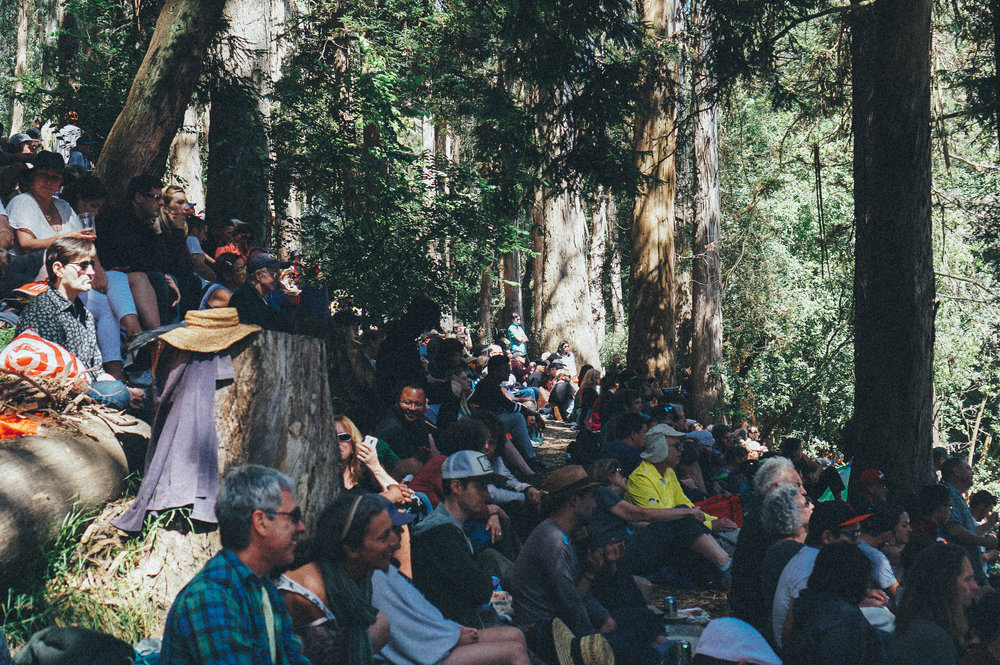 Crowd on a hillside @ Stern Grove Festival