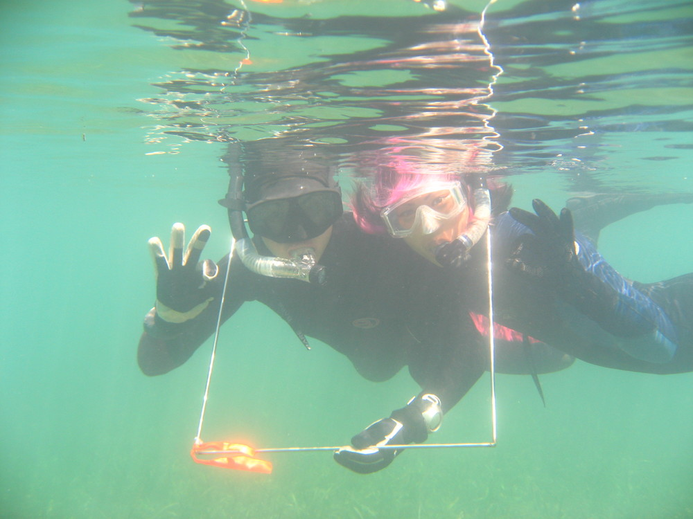Angelica Chan and Rae Matsumoto snorkeling with a quadrat