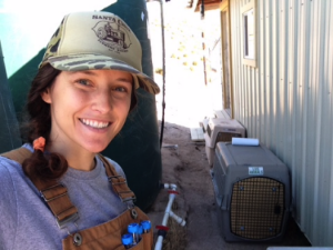 Author at her urate sampling station. The two kennels contain condors in the stress study.