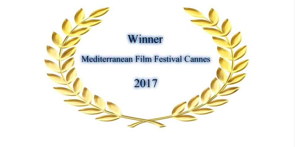 MediterraneanFF2017_orig.jpg