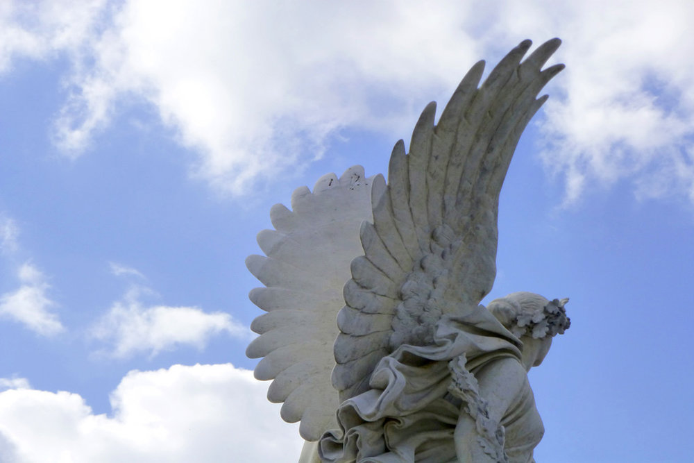 Angel by Sonja Robar.jpg