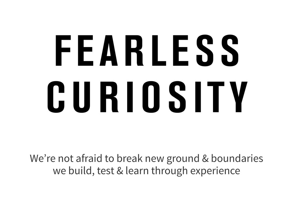 Fearless-Curiosity.jpg