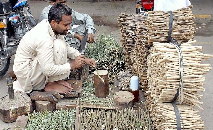 非洲街头小贩们在路边出售成捆的树枝牙刷,通常捆绑得整整齐齐,一支支就像铅笔大小。