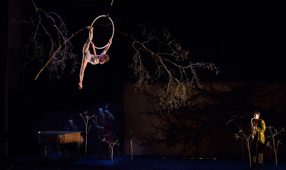 © Yves Petit, Cirque Plume 2017