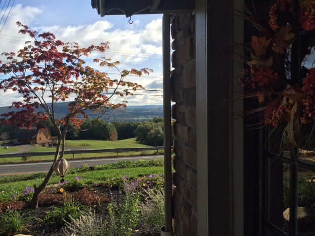 I snuck in a photo of the view from the new studio door. It look so beautiful around here this time of year! If I ever like I'm forgetting to be grateful I look out at the amazing views we have in the beautiful area and immediately remember to be happy and appreciative for the everyday.