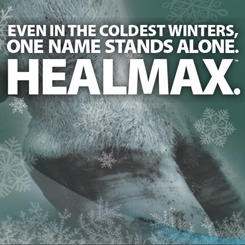HealMax Winter