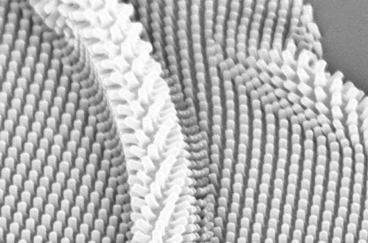Flexible Nanopattering