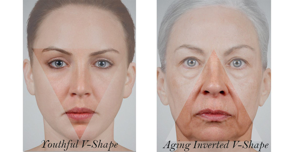 triangle young and aging.JPG