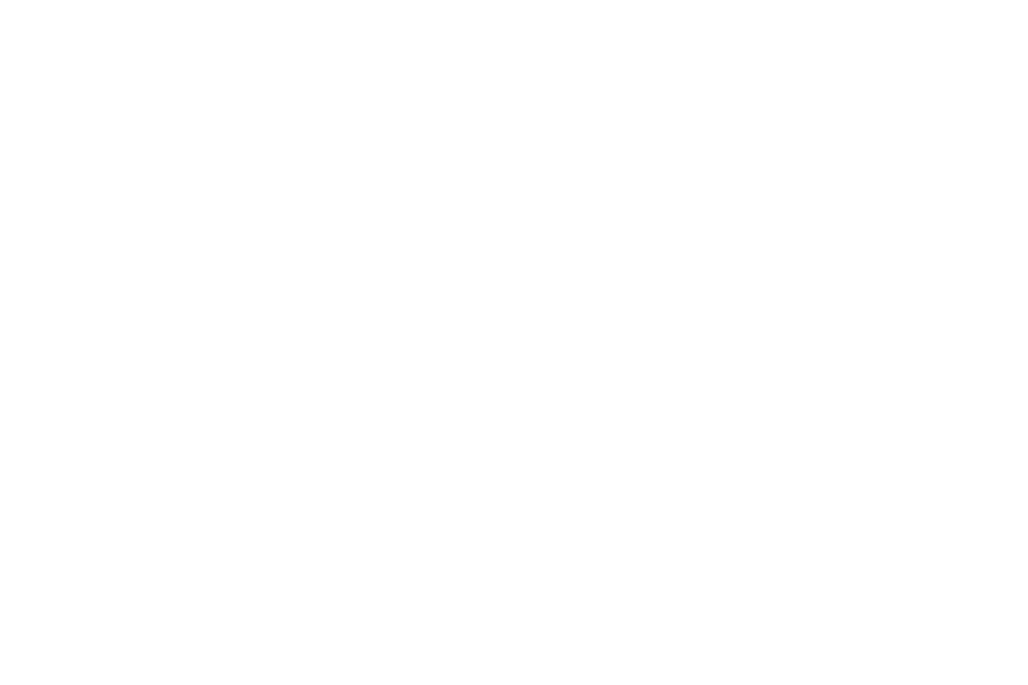 Mr. Luxury Ski