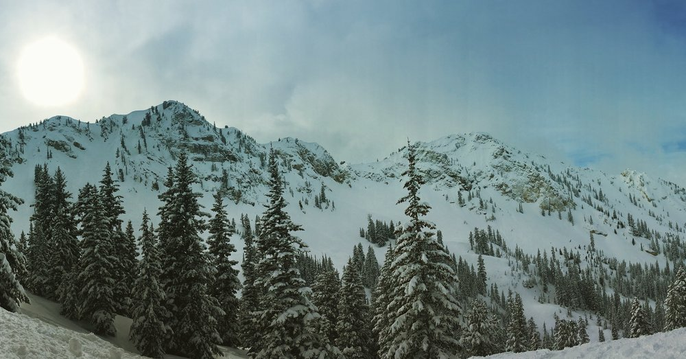 The east face of Cottonwood Canyon at Solitude Mountain Resort. ( @BeingAlexP )