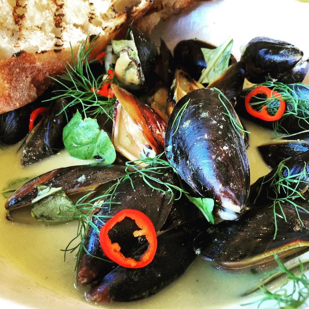 Maine Mussels, Coconut Green Curry, Fresno Chilis, Basil, Fennel