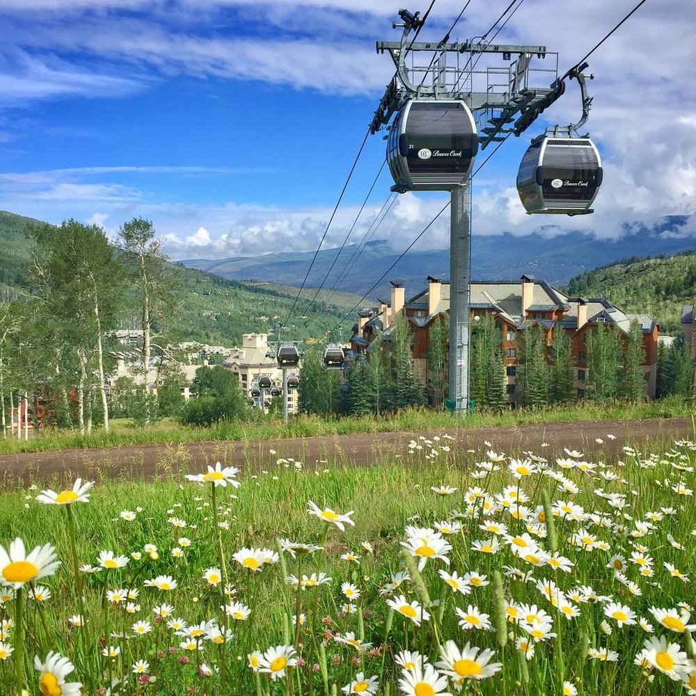 Beaver Creek Instagram