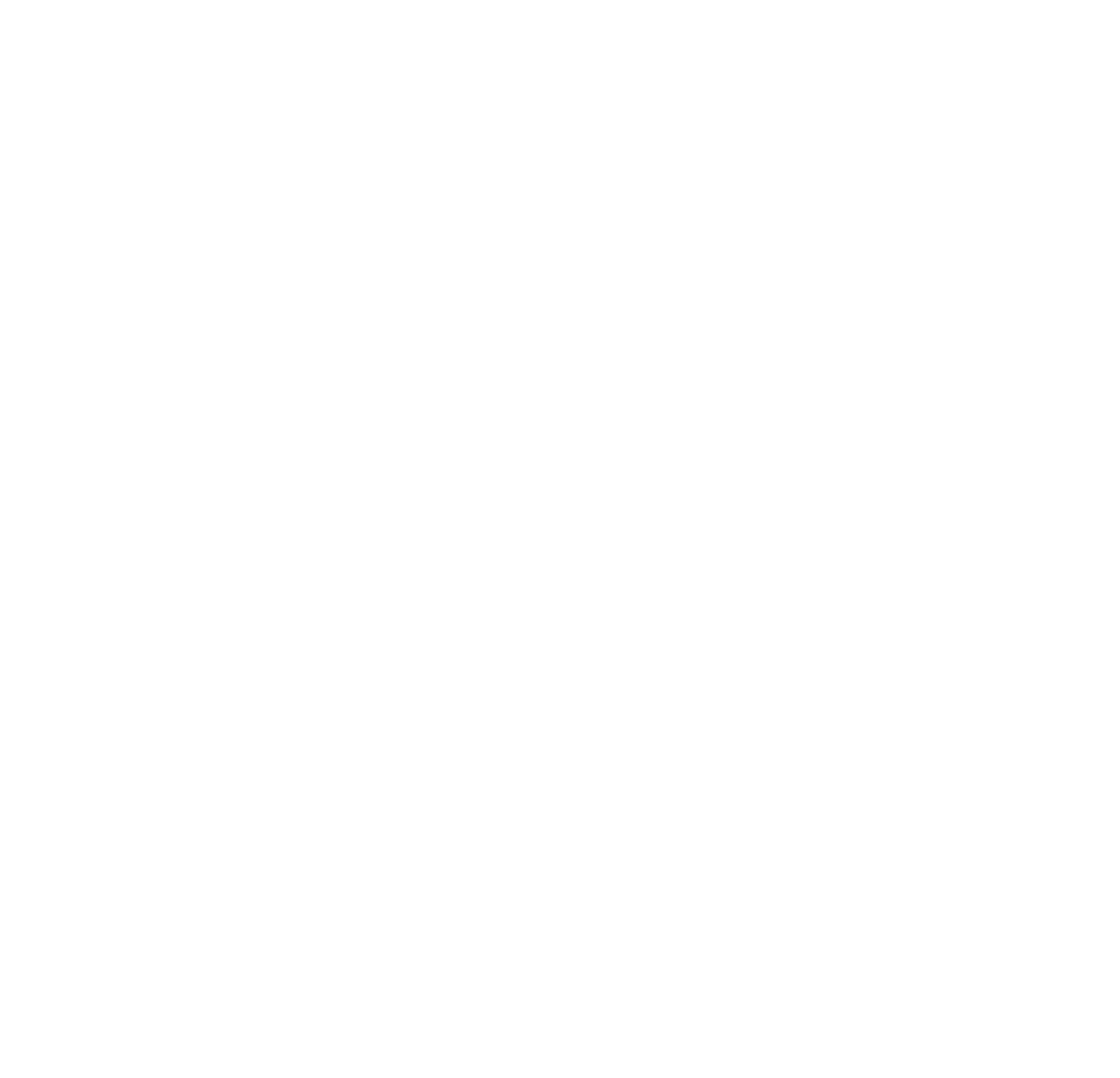 BIRDS | The culinary adventure
