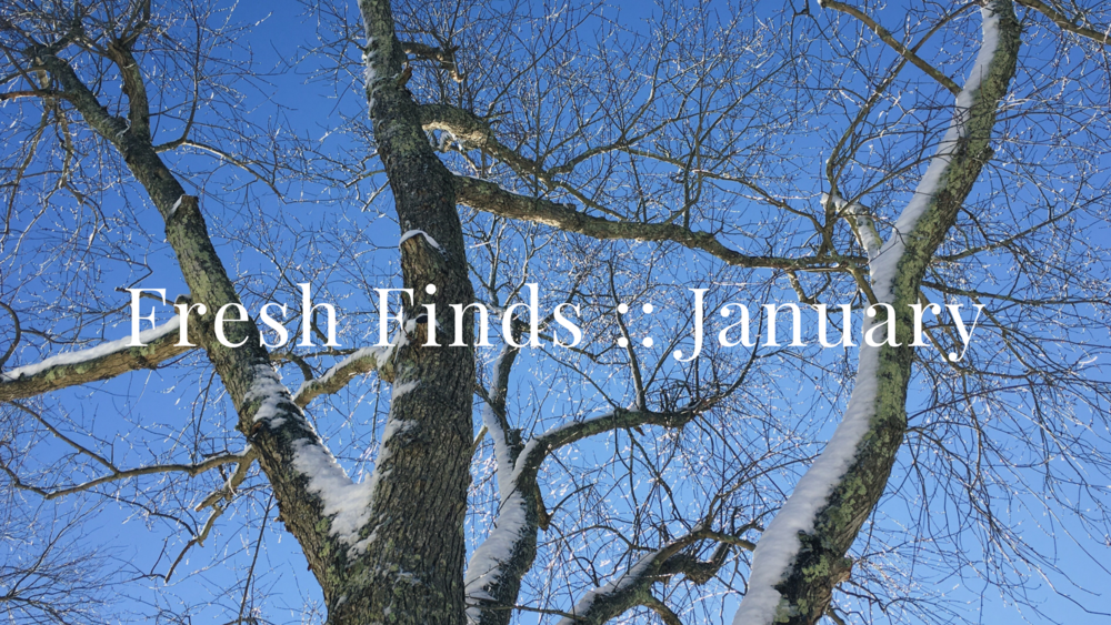 Fresh Finds :: January by Christine Barnes