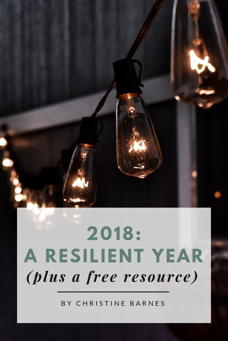 2018: A Resilient Year by Christine Barnes