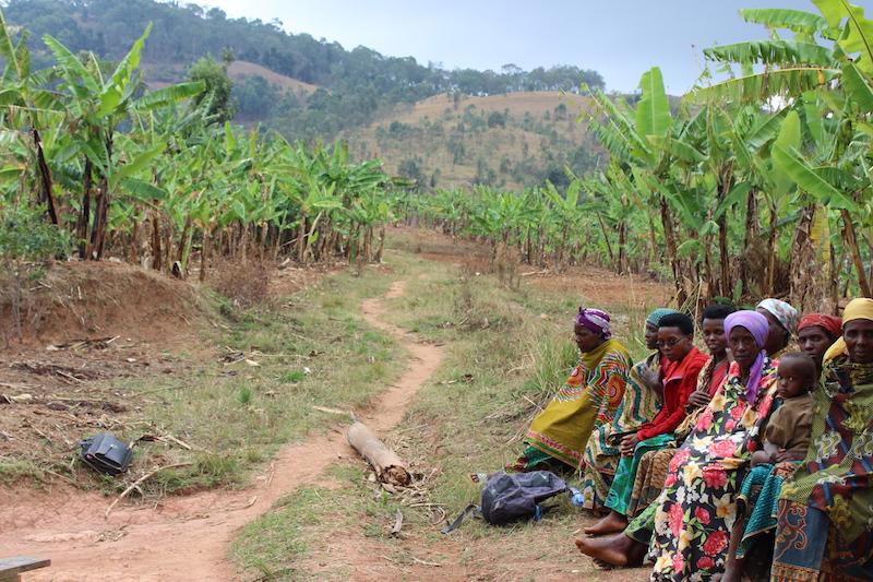 IDLO-ReneeCharters-Burundi-Oct2015-web.JPG