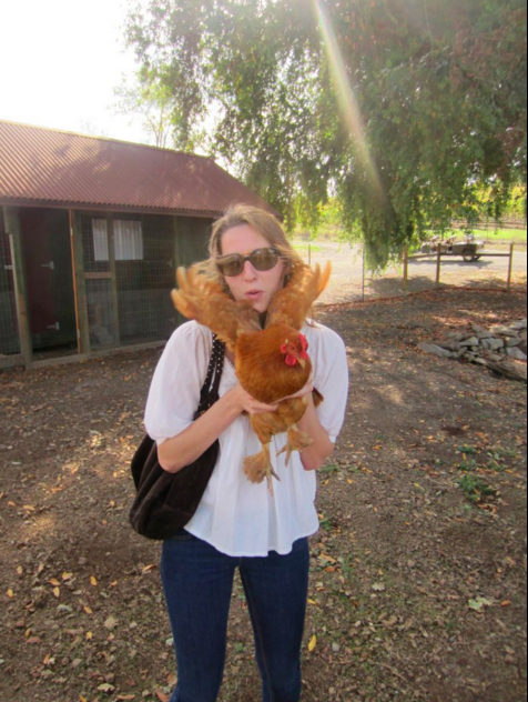 Casual Chicken Coop Tour