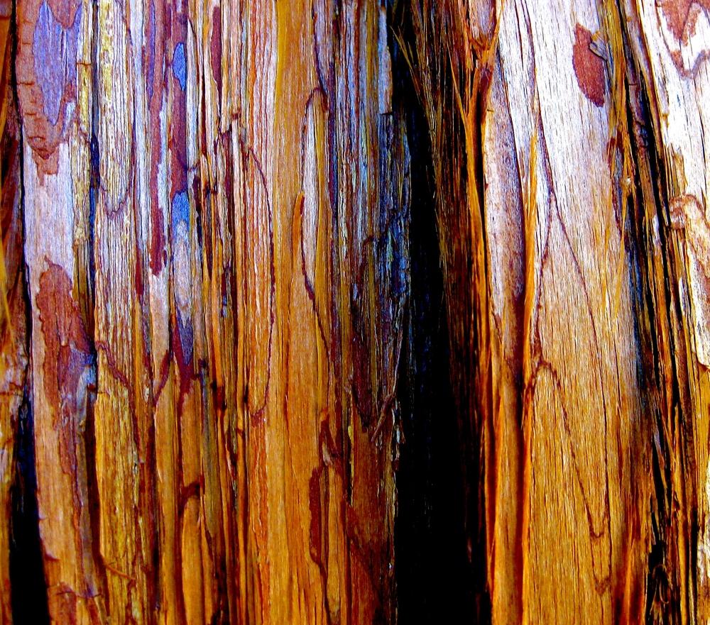 Wood 2