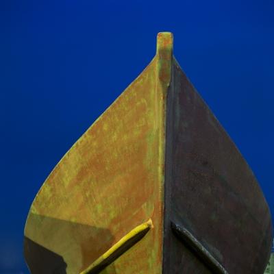 paulcarygoldbergExposed Vessel II.jpg