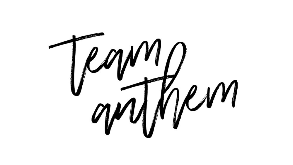 Team Anthem Website Photo 2.jpg
