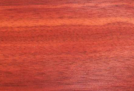 Bloodwood