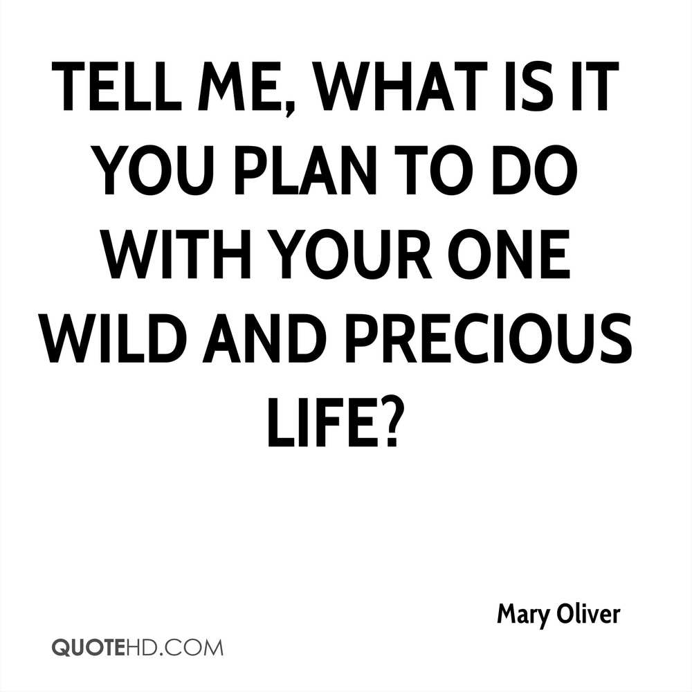 mary-oliver-quote-tell-me-what-is-it-you-plan-to-do-with-your-one-1.jpg