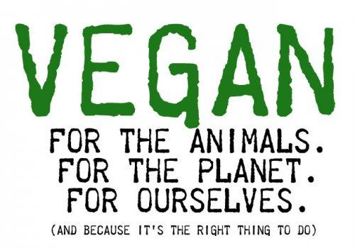 vegan0.jpg