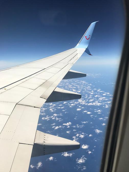 Flynn Flight.jpg