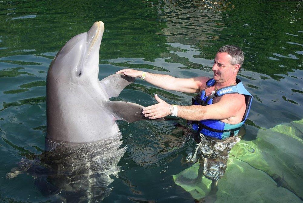 Flynn Xel Ha Dolphin Dance.jpg