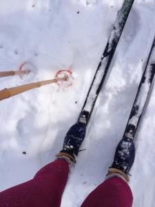 ski-snow3.jpg