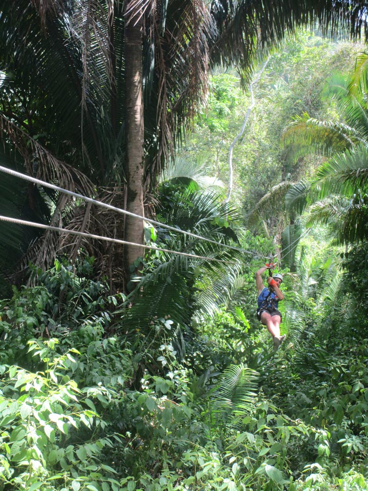 Zip lining through the Bocawina forest.