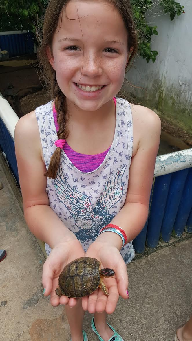 My little sister holding a baby turtle at Tortugranja