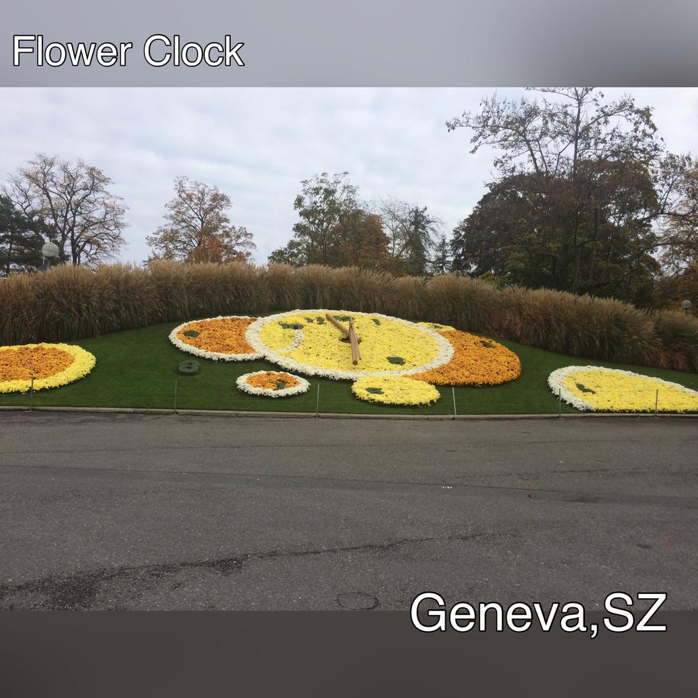 FlowerclGen).JPG