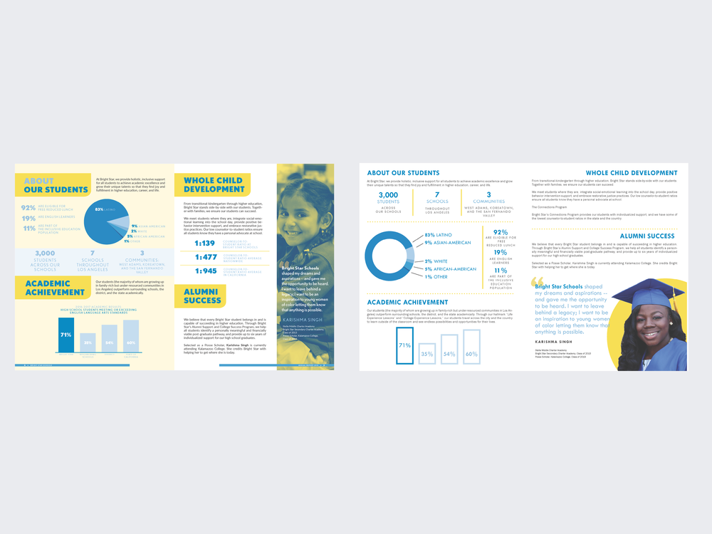 art directions proposed to the client for the report's content. the client ultimately chose option 2, a cleaner, outlined approach to organizing their data.