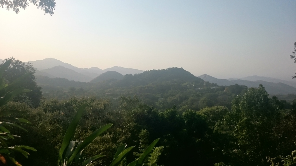 Morning View in Minca