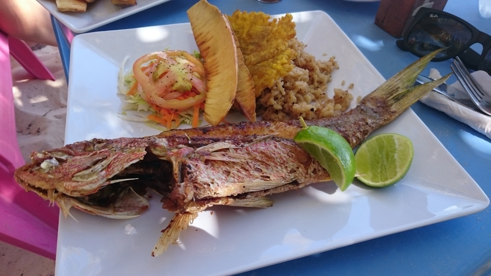 Delicious fried fish with coconut rice and breadfruit from The Grog