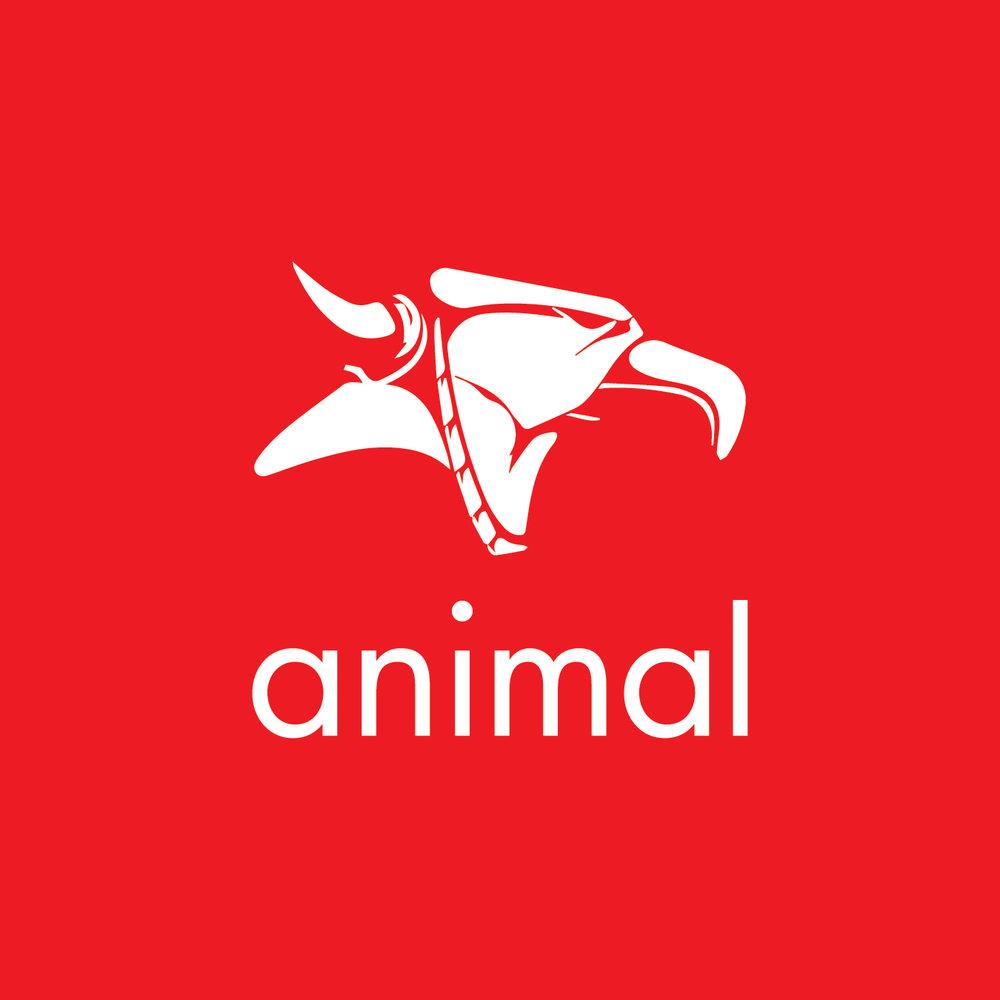 AnimalBMX.jpg