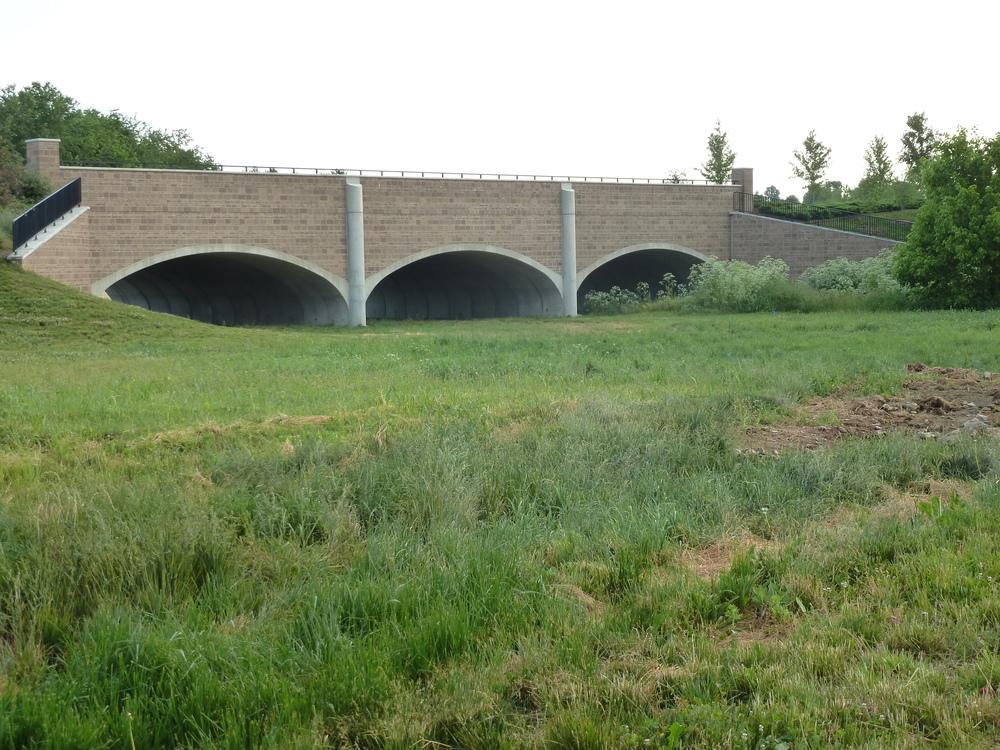 Bridge 01.JPG