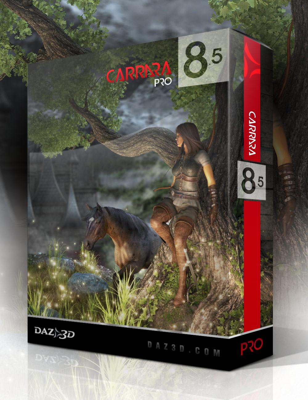 carrara 8.5 pro manual