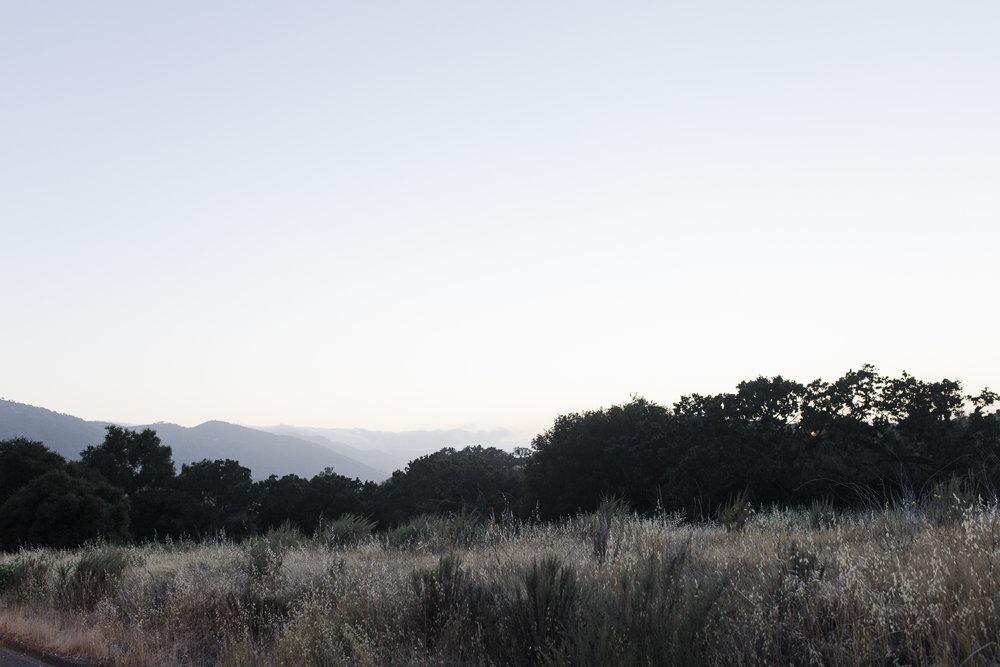 california road trip-4138.jpg