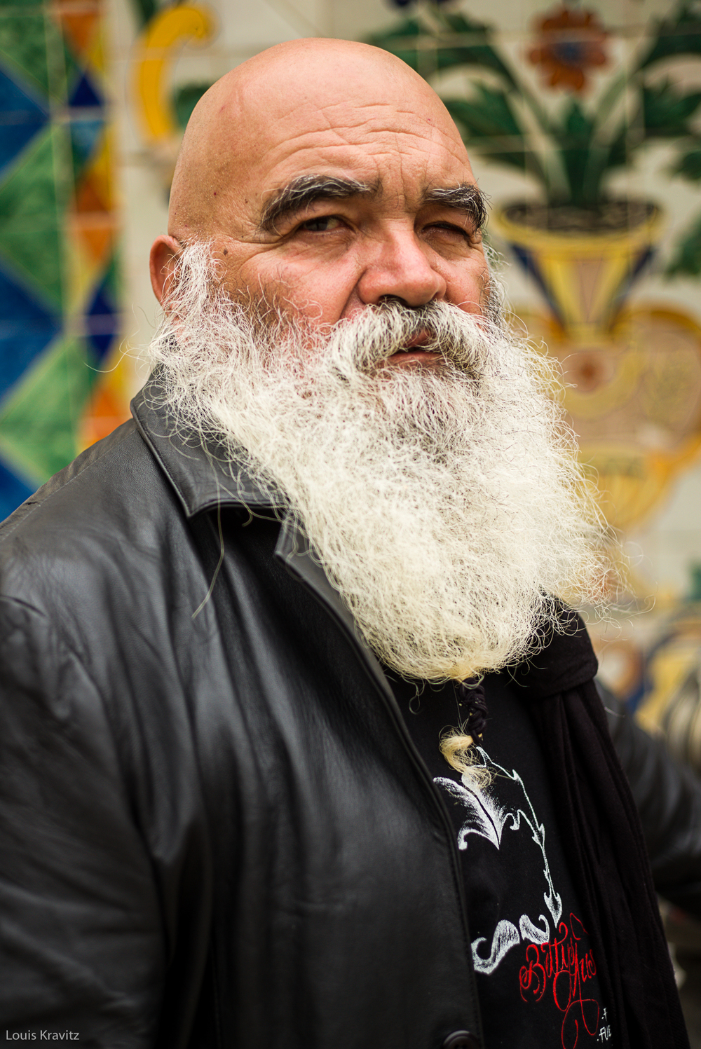portrait of a senior man with long beard