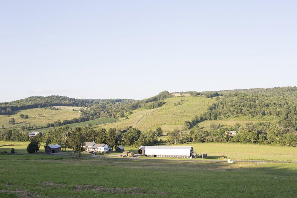 Farm_108.jpg