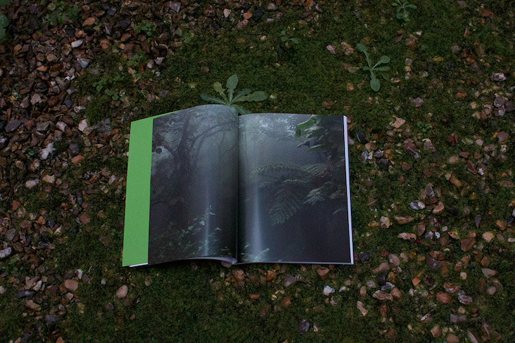 rovanio-blog-on-the-equator-book-launch-paris6.jpg