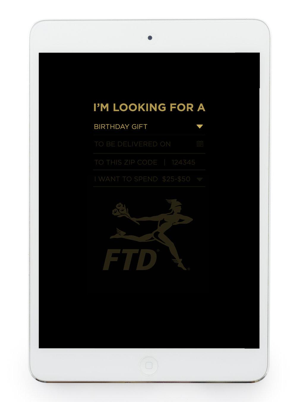 FTD_Flo_Dir_Inteface_01B.jpg