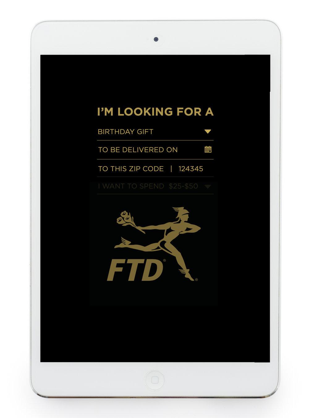 FTD_Flo_Dir_Inteface_03B.jpg