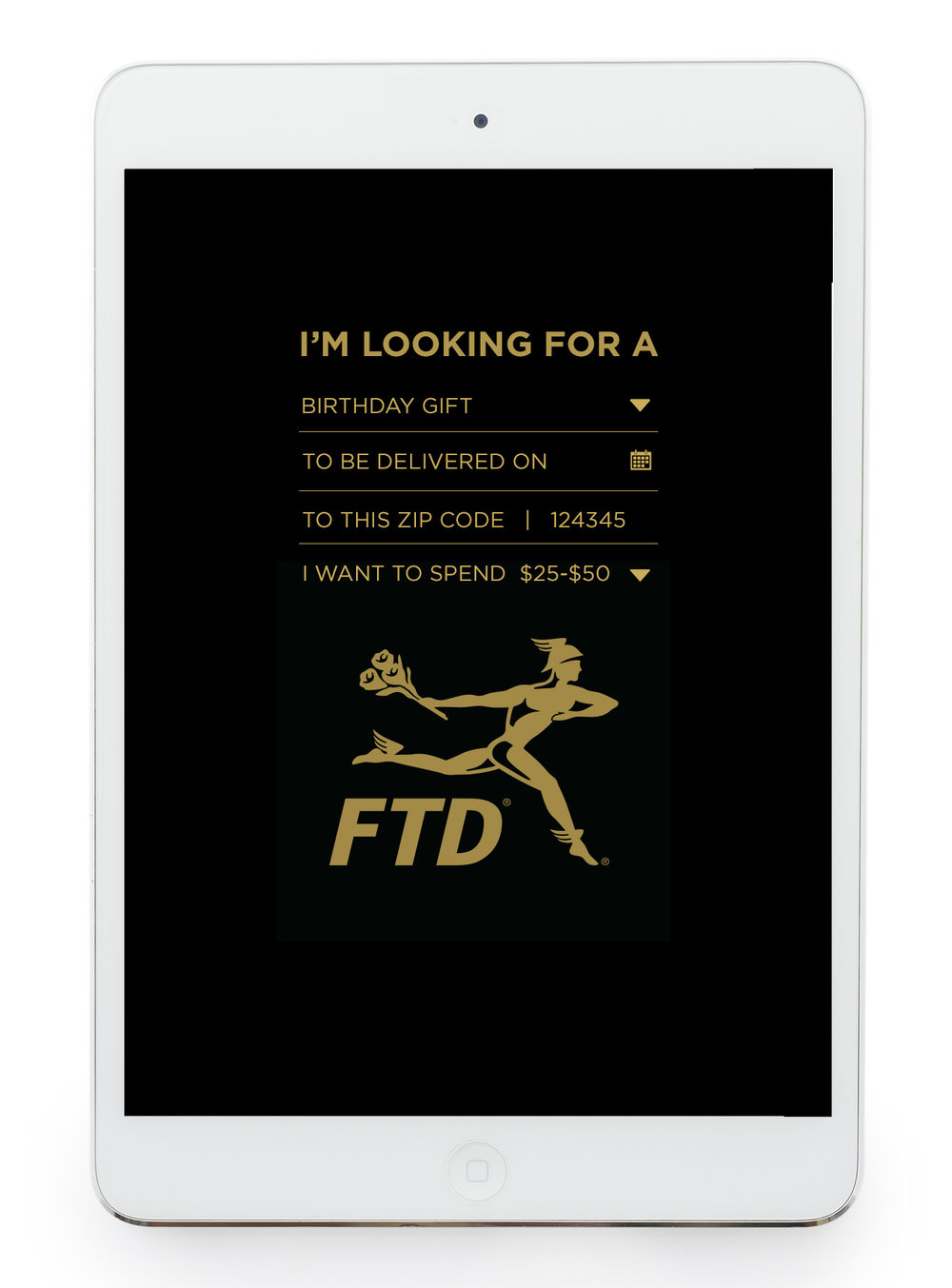 FTD_Flo_Dir_Inteface_04B.jpg
