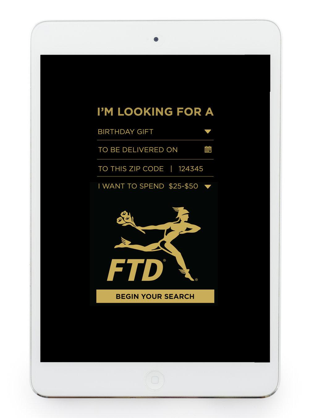 FTD_Flo_Dir_Inteface_05B.jpg